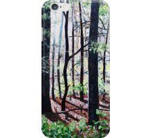 'Deep Woods Along the Glen Burney Trail'  iPhone Case/Skin