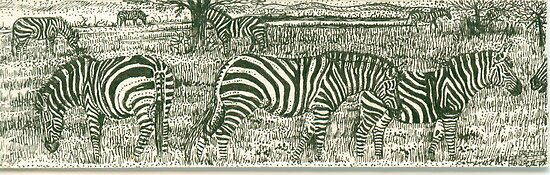 Zebra Line by Catherine  Howell