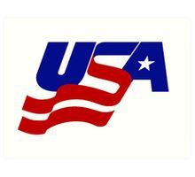 USA Sports Art Print