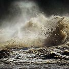 Raging River up close by Bine