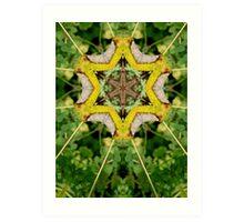 Leaf altered image Art Print