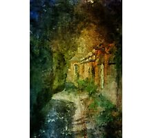 Walking In A Williamsburg Garden Photographic Print