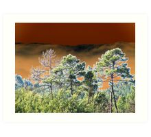 Pines against a moody sky altered image Art Print