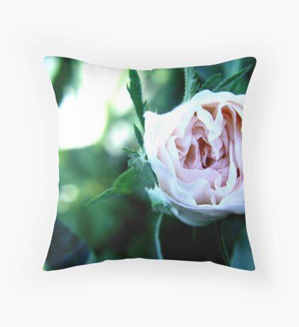 Rose bud in Macro Throw Pillow