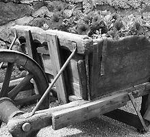 Wheelbarrow of blossom by AbsintheFairy
