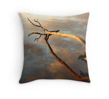 River Driftwood Throw Pillow