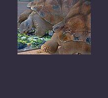 Galapagos Tortoise Unisex T-Shirt