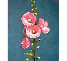 Pink Hollyhocks in Oil Pastel Photographic Print
