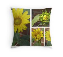 Sunflower Collage 2 Throw Pillow
