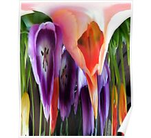 Melted Tulips Poster