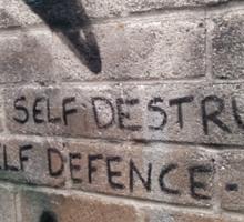 It's not self destructive - The Libertines Sticker