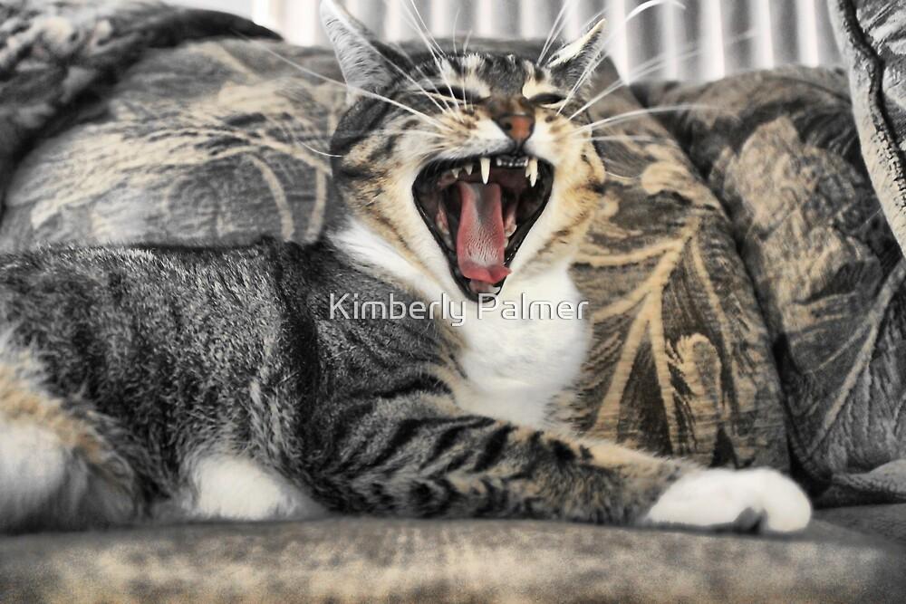 Hear me Roar by Kimberly Palmer