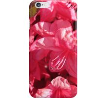 pink azalea flowers. floral photography. iPhone Case/Skin