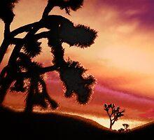 'High Desert Dawn' by DLUhlinger