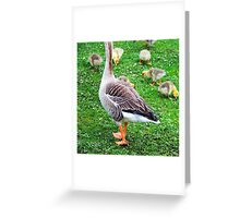 Caerphilly Castle Grounds, Caerphilly, April 2009 Greeting Card