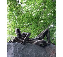 Sssssnakeman on Rock 1 Photographic Print