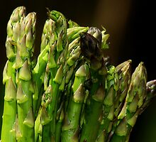 Asparagus by Dipali S