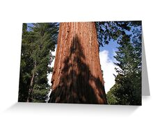 In the Shadow of the Giants Greeting Card