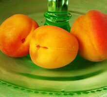 Still life with Apricots by jsmusic