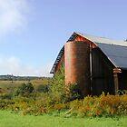Barn 9_When the Fog Burned Off by Hope Ledebur