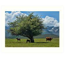 Scenic Cows Art Print