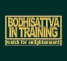 Bodhisattva in Training by Paul  Reynolds