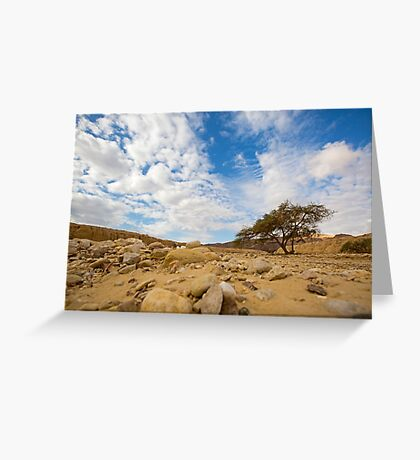 Enduring Acacia tree survives in the Desert Greeting Card