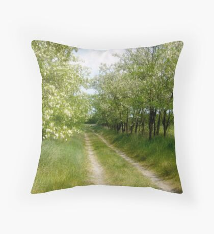 The Driveway Throw Pillow