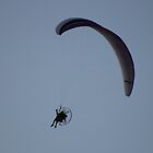 Parasailing by Laurie Puglia