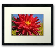 Huge Red Flower Framed Print
