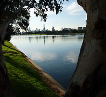 Albert Park Melbourne by solena432