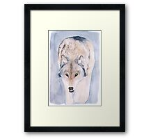 Hunting Wolf Watercolour Painting Framed Print