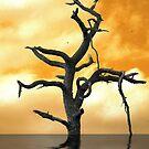 Tree of Pain by Donna Adamski