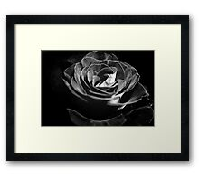 Dark Black and White Rose Framed Print