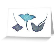 flap flaps Greeting Card