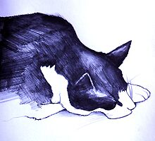 Tom the cat by Andrew Hennig