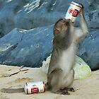 Drink Like a Fish, Skol Like a Monkey? by Jimmy Jobson