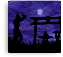Ninja Attack Canvas Print
