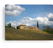 Vigna Toscana Canvas Print