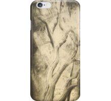 Empty Nest Trilogy iPhone Case/Skin