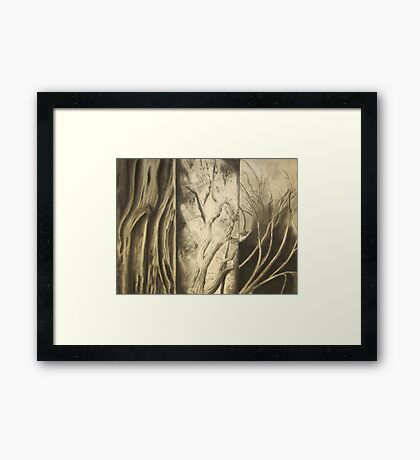 Empty Nest Trilogy Framed Print