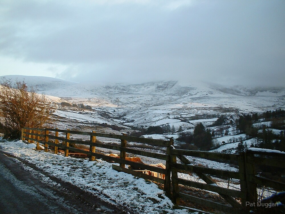 Nire Valley Snows by Pat Duggan
