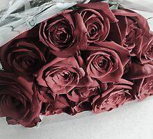 Roses by Erin-Lloyd
