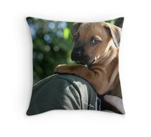 Caley - new staffy pup Throw Pillow