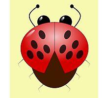Ladybug, ladybird Photographic Print