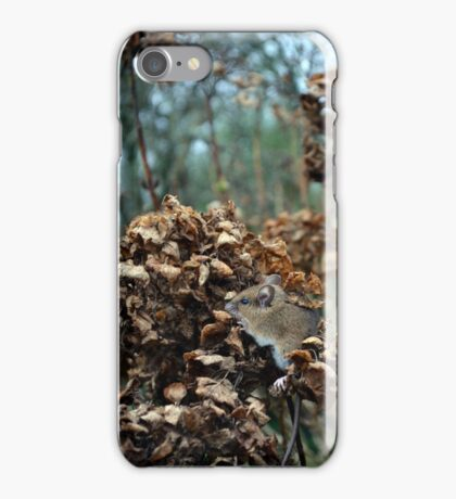 The perched prey.  iPhone Case/Skin