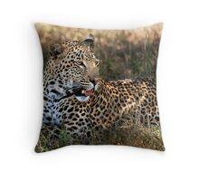 Phinda Leopard portrait Throw Pillow