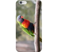Out on a Limb! iPhone Case/Skin