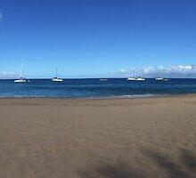 Maui Beach by Erin-Lloyd