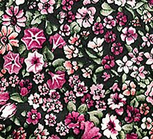 Cute Red Pink And White Pretty Floral by Maria Fernandes